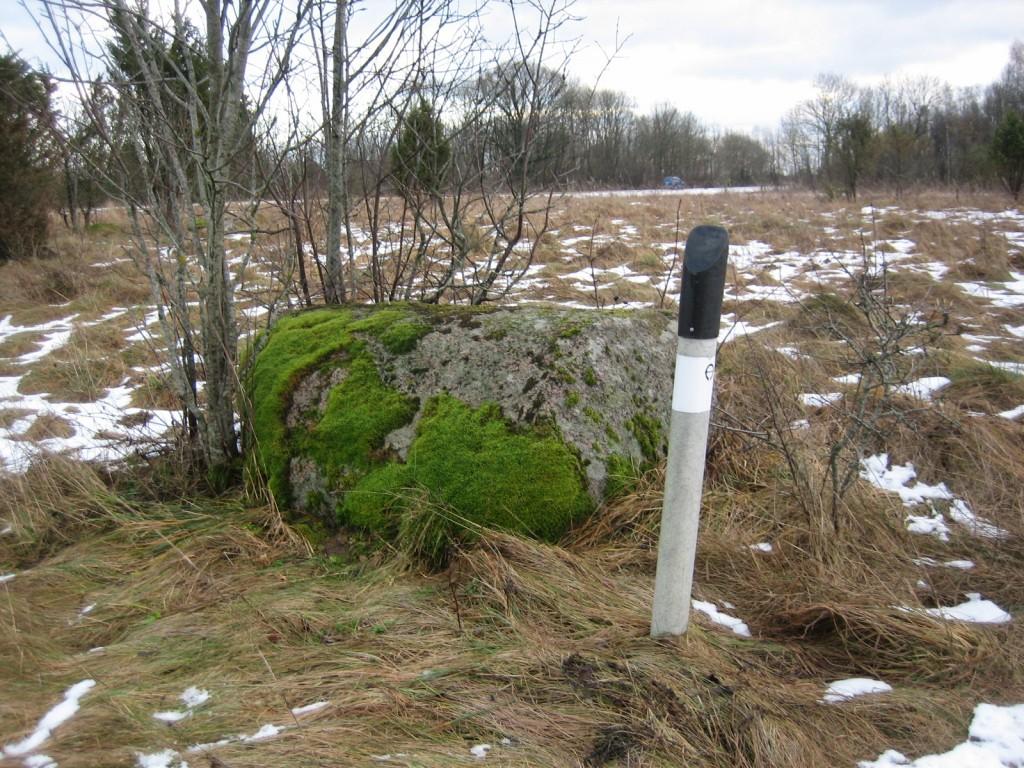 Vaade loodest. Foto Silja Konsa, 05.01.2012