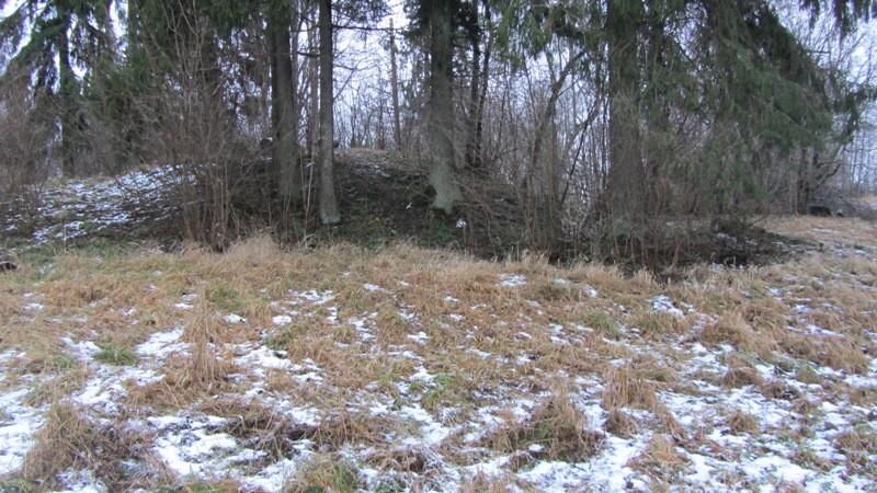 Vaade Reastvere linnuse läänepoolsele vallile loodest. Autor Karin Vimberg. Kuupäev 05.01.2012.