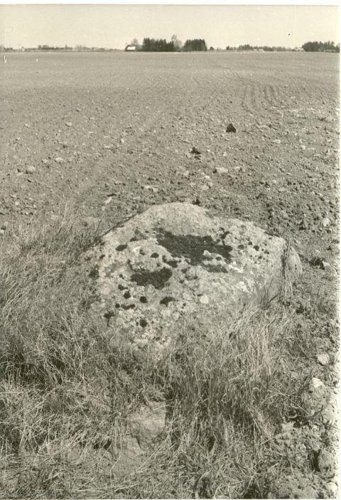 Kultusekivi - läänest. Foto: H. Joonuks, 1980.