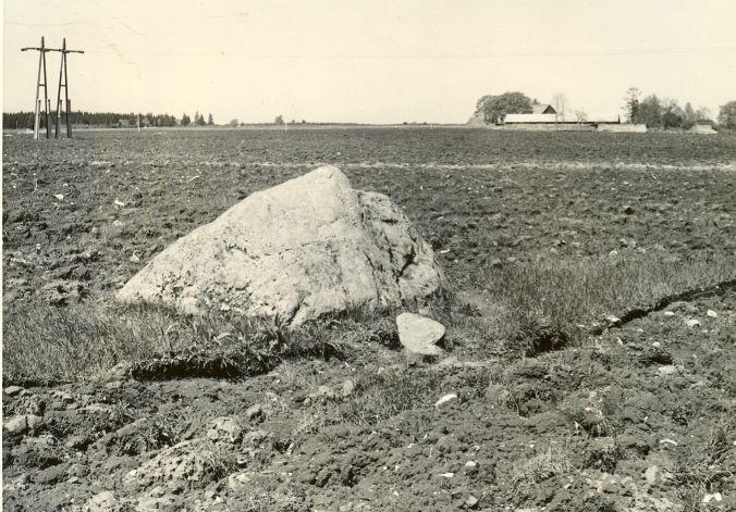 Kultusekivi - läänest. Foto: H. Joonuks, 1977.