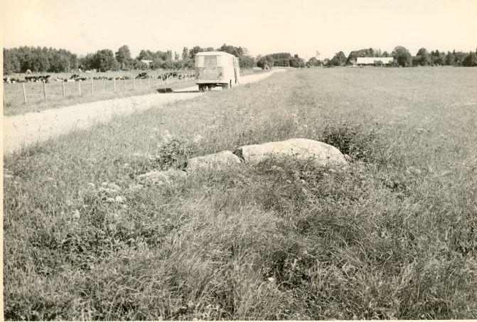 Kultusekivi - läänest. Foto: H. Joonuks, 1978.