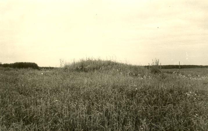 """Kivikalme """"Linnuvare"""". Foto: H. Joonuks, 1971."""