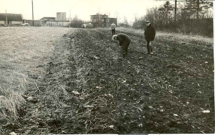 Asulakoht - põhjast. Foto: E. Väljal, 27.10.1986.