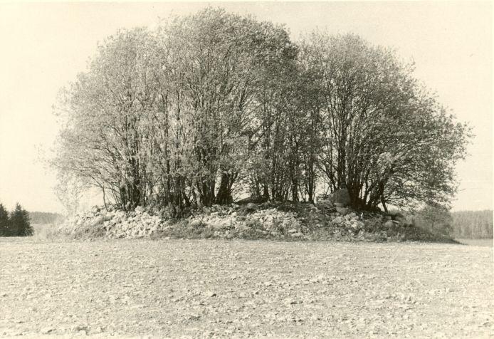 Kivikalme - läänest (lähivaade). Foto: H. Joonuks, märts 1976.