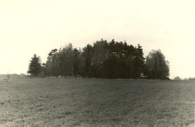 Maa-alune kalme - idast. Foto: H. Joonuks, 1976.