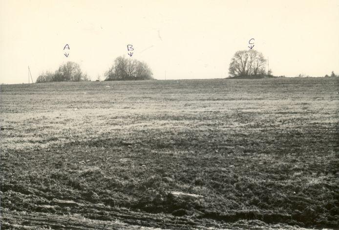 Kivikalmed A - 10559; B - 10560; C - 10561, vaade põhjast. Foto: H. Joonuks, 1980.