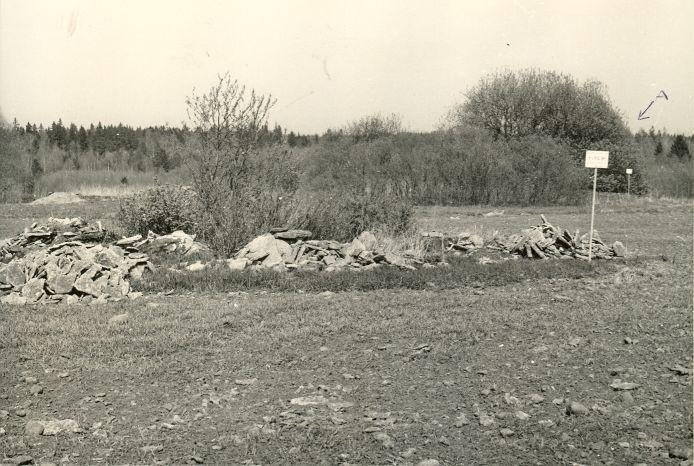 Kivikalme - edelast (A kivikalme nr 10564). Foto: H. Joonuks, 1980.