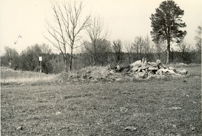 Kivikalme - kagust (A - kivikalme nr 10568). Foto: H. Joonuks, 1980.