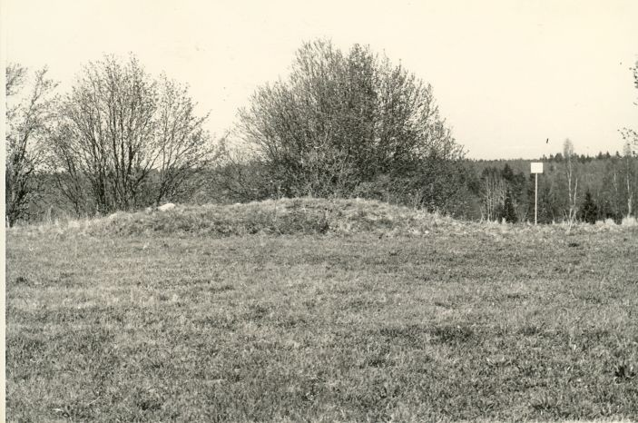 Kivikalme - lõunast. Foto: H. Joonuks, 1980.