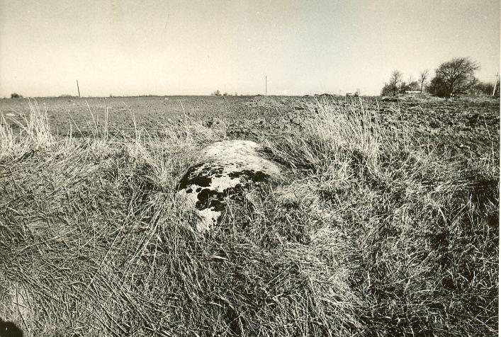 Kultusekivi (paremal kivikalme nr 10585) - kagust. Foto: M. Pakler, 10.05.1988.