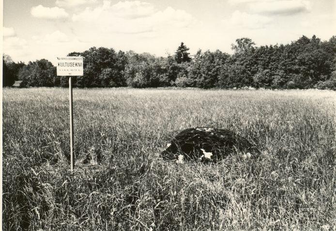 Kultusekivi - idast. Foto: H. Joonuks, 1979.