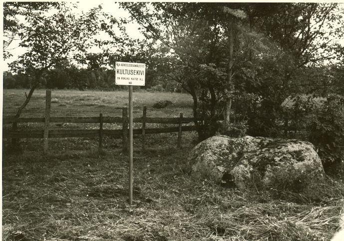 Kultusekivi - põhjast. Foto: H. Joonuks, 1979.