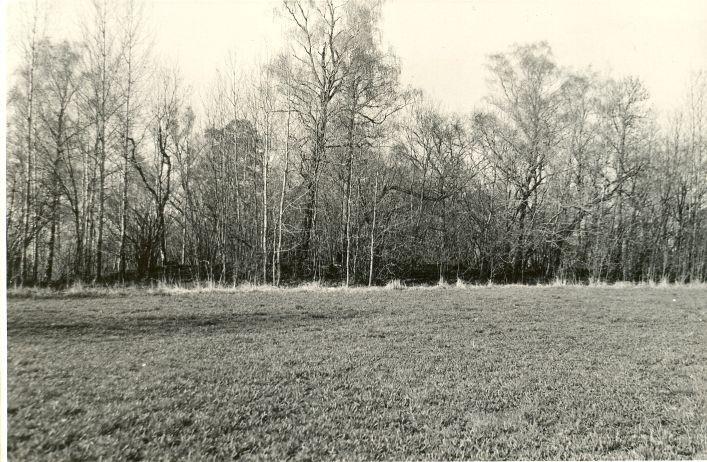 Linnuse eelvall läänest. Foto: O. Multer, mai 1983.