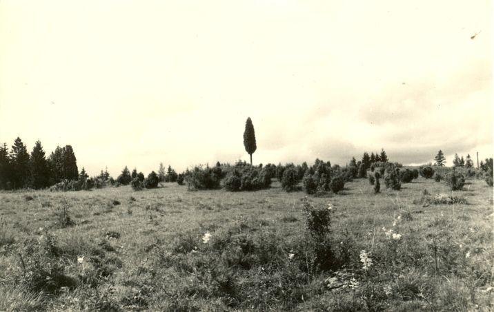 Kivikalmed ja muistsete põldude jäänused.