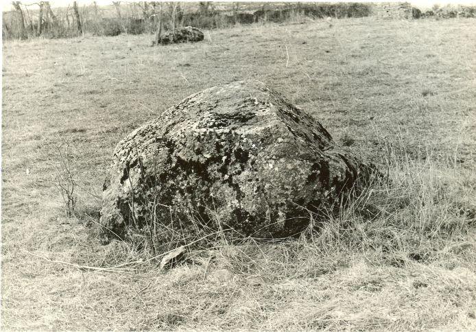 Kultusekivi - lõunast. Foto: H. Joonuks, 1976.