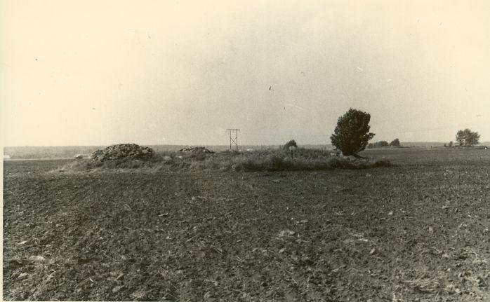Kivikalmed reg nr-d 10714-10716 - lõunast. Foto: H. Joonuks.