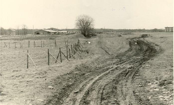 Kivikalme - põhjast. Foto: H. Joonuks, 1976.