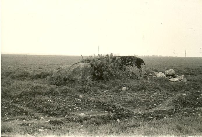 Kultusekivi (parempoolne kivi on nr 10849) - idast. Foto: H. Joonuks.