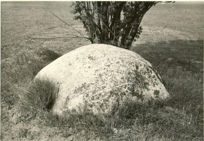 Kultusekivi reg nr 10857, vaade lõunast. Foto: H. Joonuks, 1980.