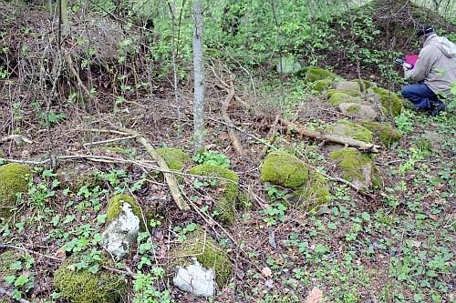 Vaade välja kaevatud kivikonstruktsioonile kagust. Foto: K. Lange, 08.05.2007.