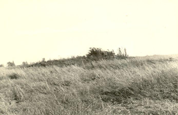 Kivikalme - loodest. Foto: H. Joonuks, 1975.