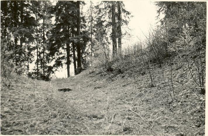 Äntu Punamägi - I ja II linnuse vaheline kraav ja pealinnuse N-poolne otsavall läänest. Foto: O. Multer, mai 1983.