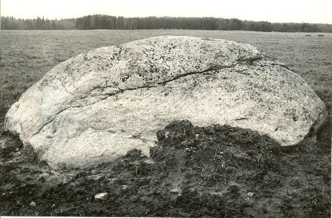 Kultusekivi reg nr 10947, vaade idast. Foto: E. Väljal, 27.10.1986.