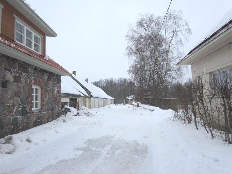 15822 Vaeküla mõisa piirdemüürid, 10.03.2012 Anne Kaldam,  vaade lõunast