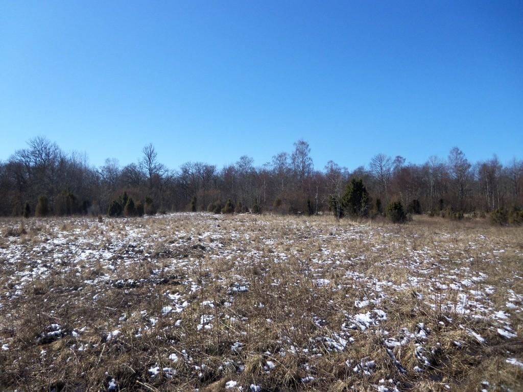 vaade kalmele reg nr 12654. Foto: R. Peirumaa, 2012 aprill