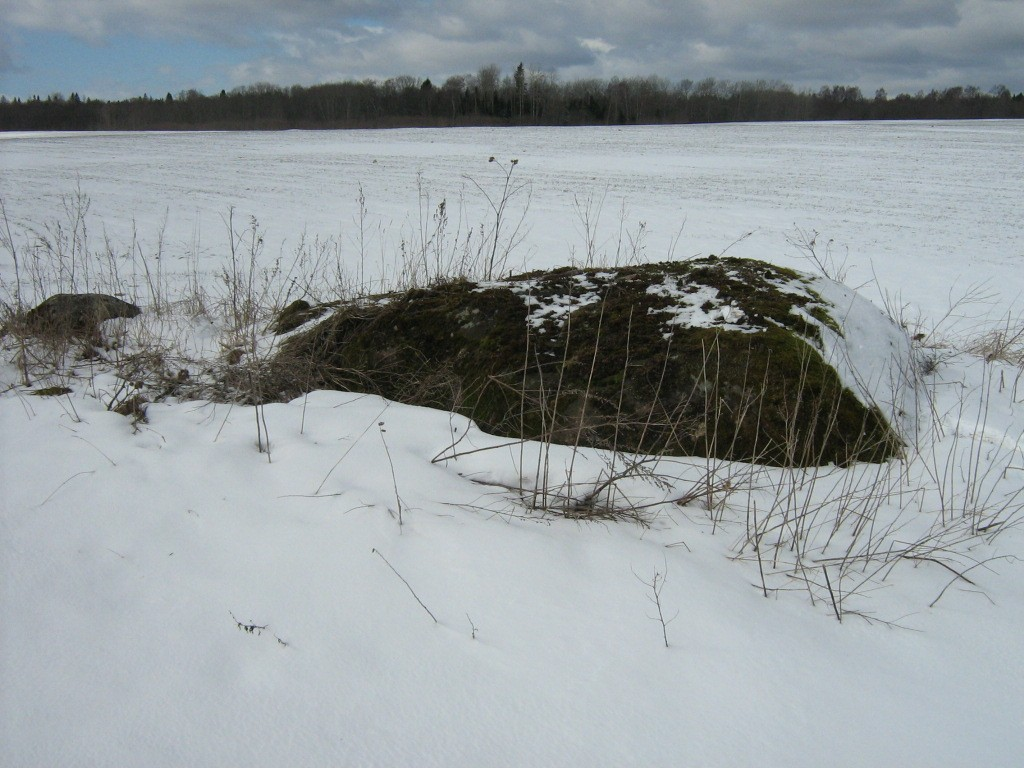 Lohukivi reg nr 10261. Foto: Ingmar Noorlaid, 04.04.2012.