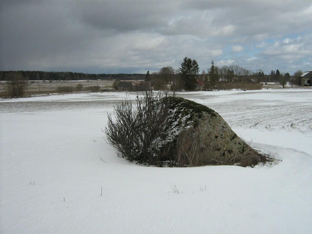Lohukivi reg nr 10284. Foto: Ingmar Noorlaid, 04.04.2012.