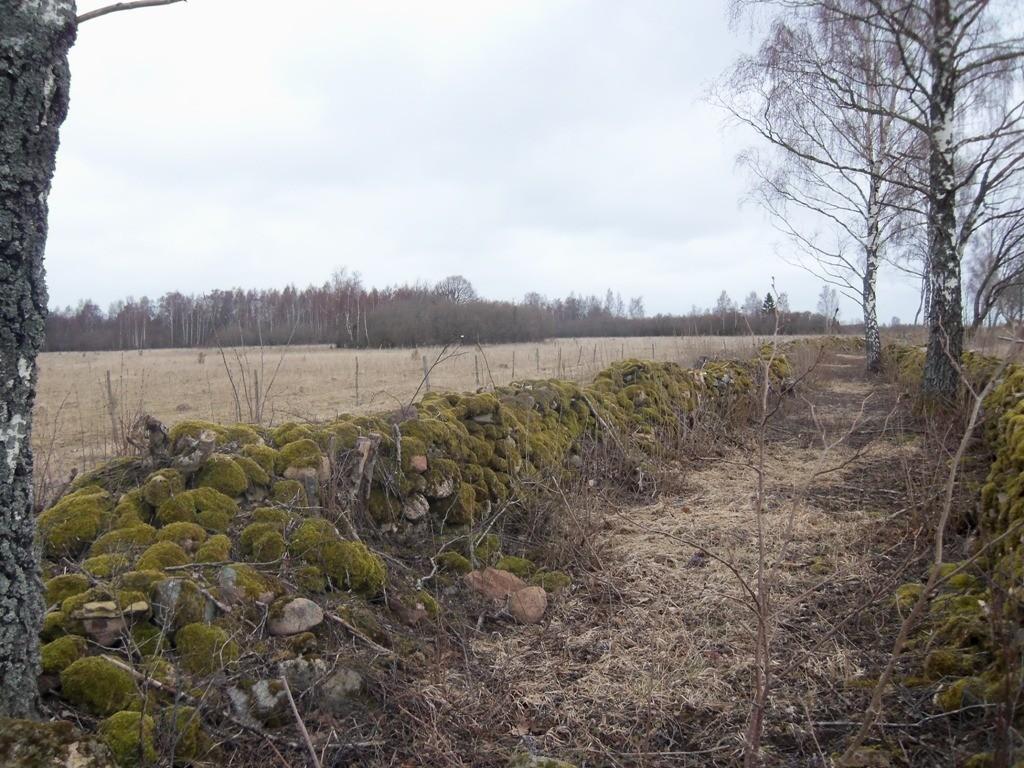 Külade vaheline tee, taamal kivikalme reg nr 12533. Foto: R. Peirumaa, 14.04.2012.