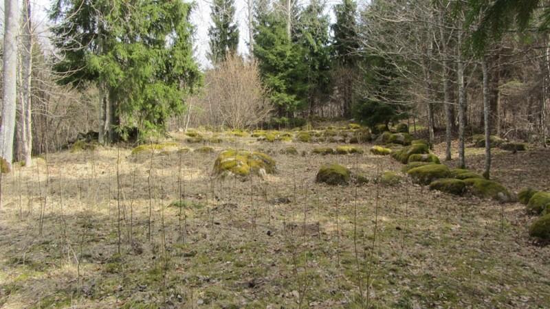 "Vaade mälestisele ""Jaagupi kivistik"" läänest. Foto: Karin Vimberg, 19.04.2012."