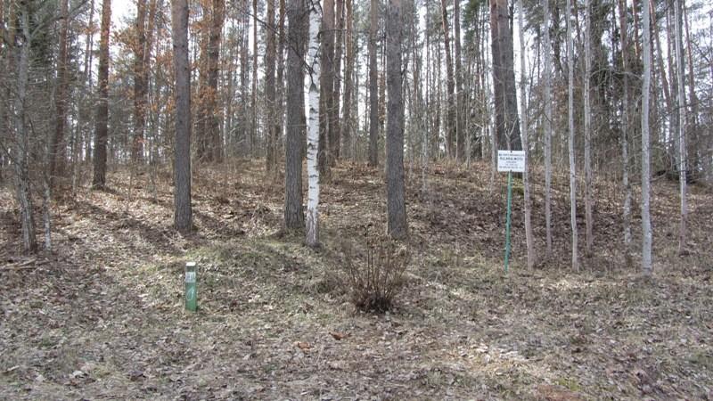 """Vaade kirdest """"Kabelimäe"""" jalamile ja sinna paigaldatud mälestise tähisele. Foto: Karin Vimberg, 19.04.2012."""