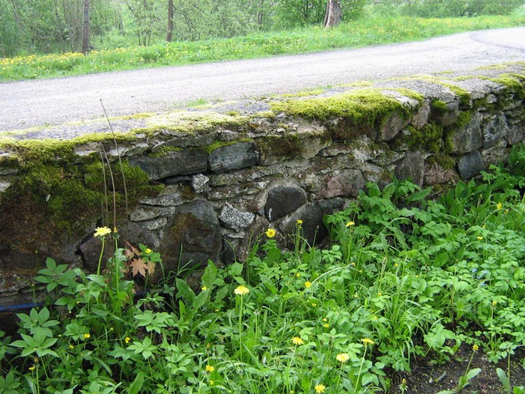 Põhjakülje müürilõik  Autor Kalli Pets  Kuupäev  22.05.2007