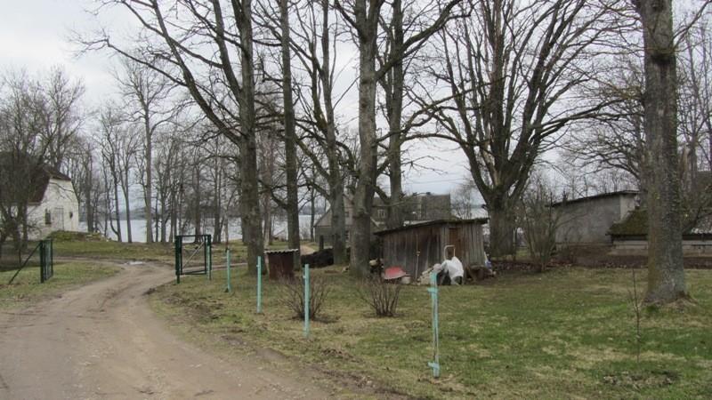 Vaade Saadjärve asulakoha lõunaalale. Taamal Saadjärve mõisa härjatall. Foto: Karin Vimberg, 25.04.2012.