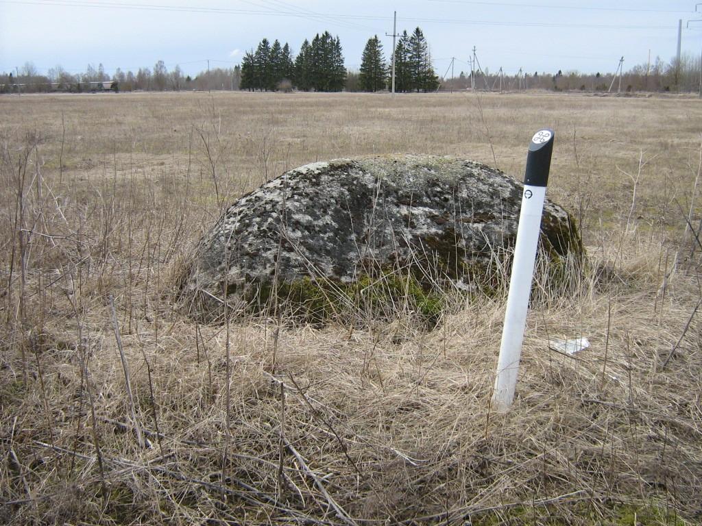 Lohukivi reg nr 10690. Foto: Ingmar Noorlaid, 16.04.2012.
