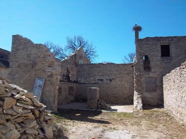 Seli mõisa viinavabriku varemed, vaade kirdest. K. Klandorf 02.05.2012
