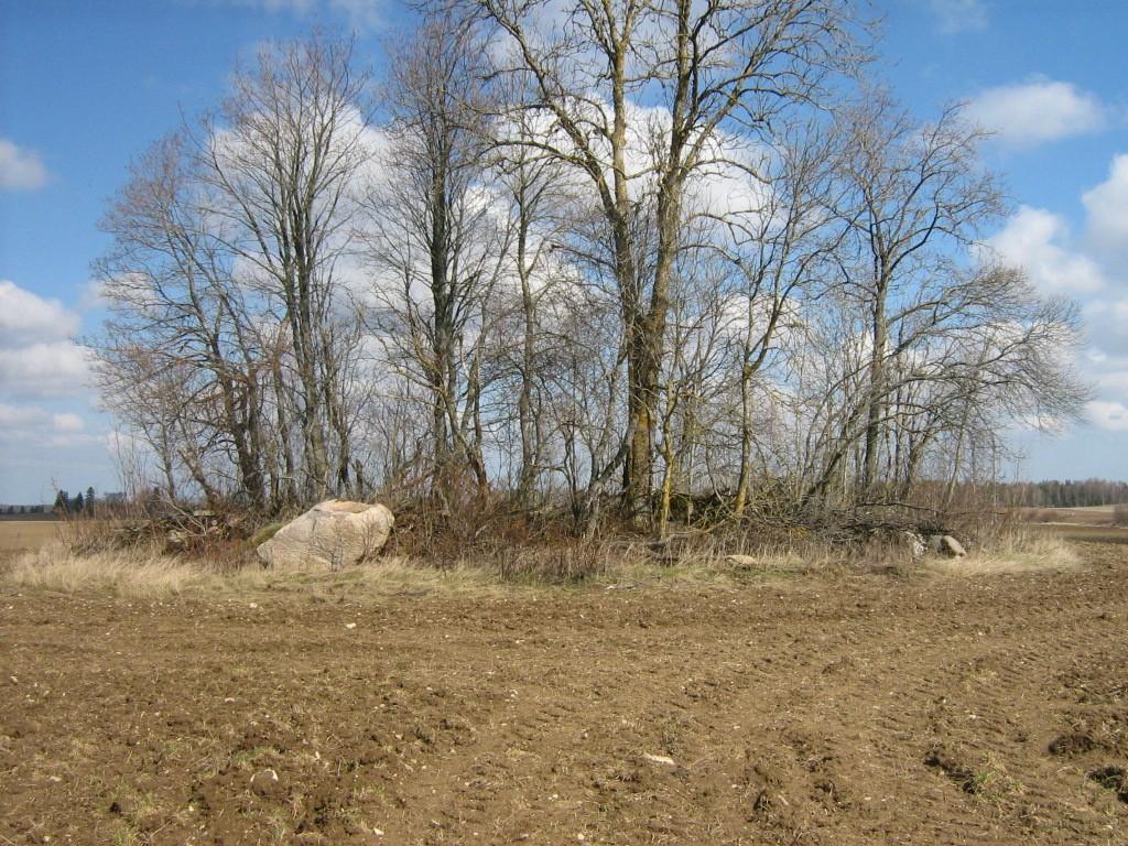 Kivikalme reg nr 10281. Foto: Ingmar Noorlaid, 25.04.2012.