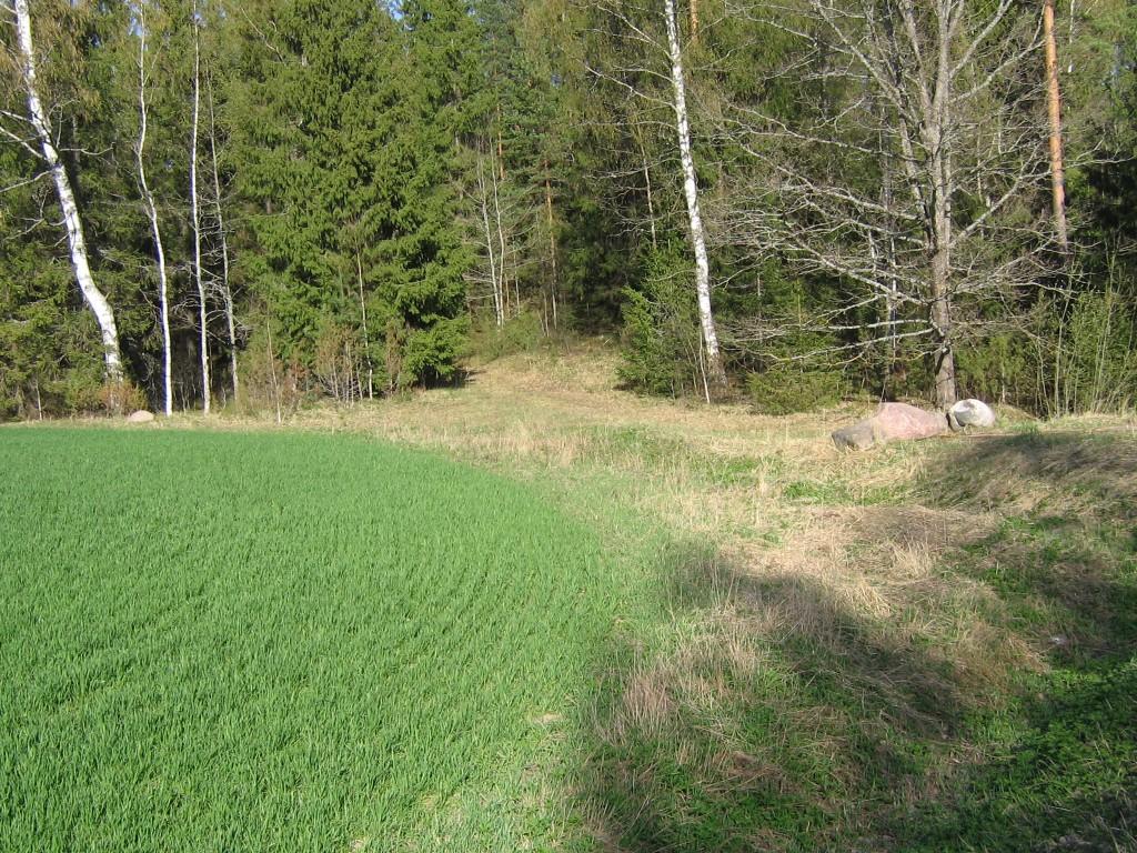 Vinso kalmistu. Paikneb põllul ja metaga kaetud künkal. Foto: Viktor Lõhmus, 02.05.2012.
