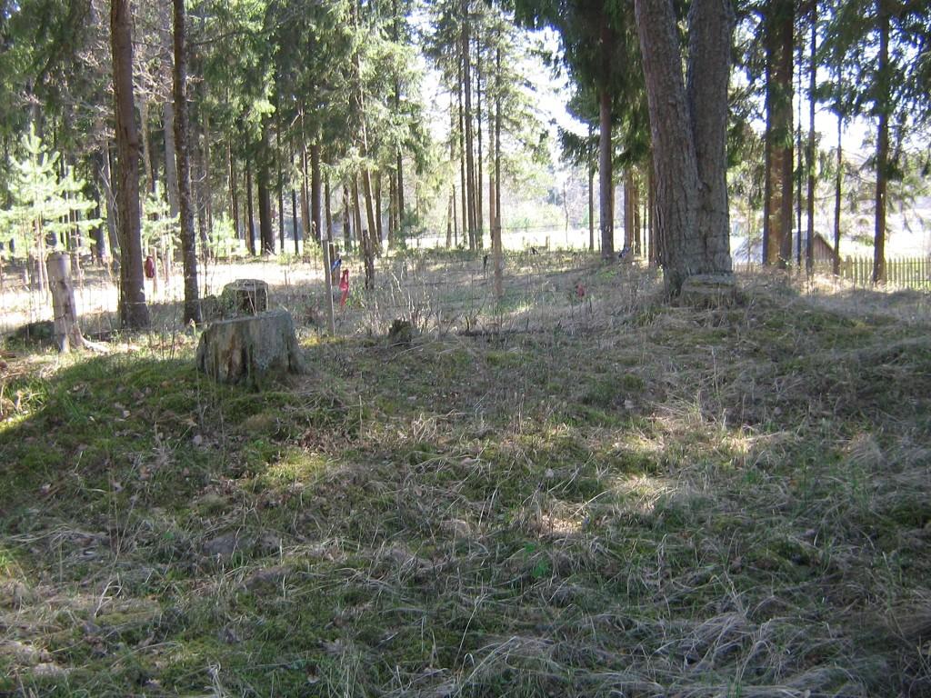 Vaade kolmandale kääpale metsa servas. Lugemist alustatud taluhoonete poolt. Foto: V. Lõhmus, 04.05.2012.