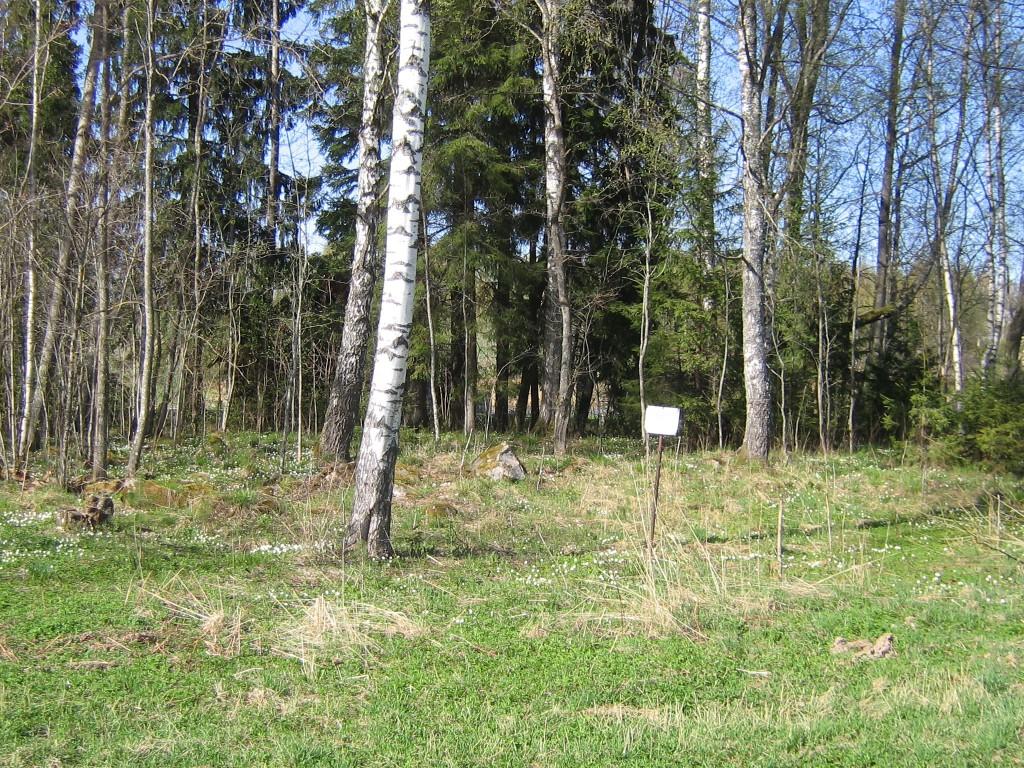 Vaade Juusa kivikalmele II kevadel. Foto: Viktor Lõhmus, 04.05.2012.