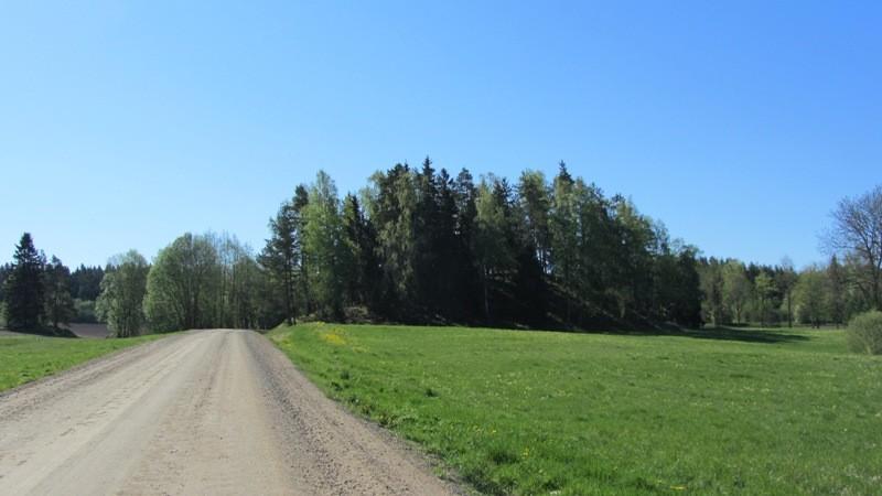 Vaade Makitamäele põhjast Makita-Lutike teelt. Foto: Karin Vimberg, 14.05.2012.