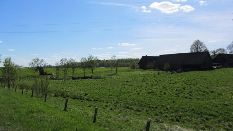 Vaade Nõuni asulakohale idast. Foto: Karin Vimberg.