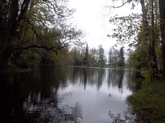 Alu mõisa pargi lõunapoolse osa vaade põhjapoolt. K. Klandorf 17.05.2012