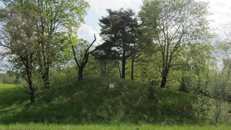 Vaade mälestisele ja kaitsetahvlile Palu-Arula teelt, st läänest. Foto: Karin Vimberg, 17.05.2012.