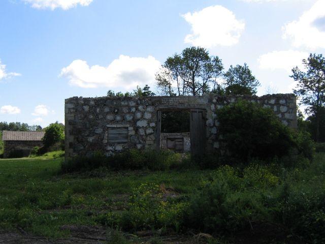 Mõdriku mõisa karjalaut 2 :15992.vaade läänest, varisenud katus lammutatud  Autor ANNE KALDAM  Kuupäev  19.06.2007