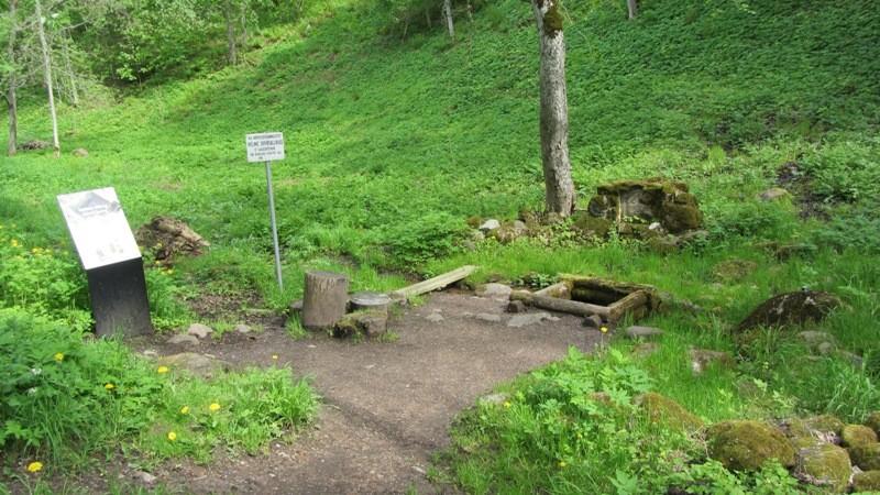 """Vaade arheoloogiamälestisele """"Pärliallik"""" läänest. Foto: Karin Vimberg, 21.05.2012."""