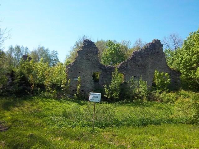 Vaade Angerja linnuse varemetele kirdesuunast. K. Klandorf 25.05.2012