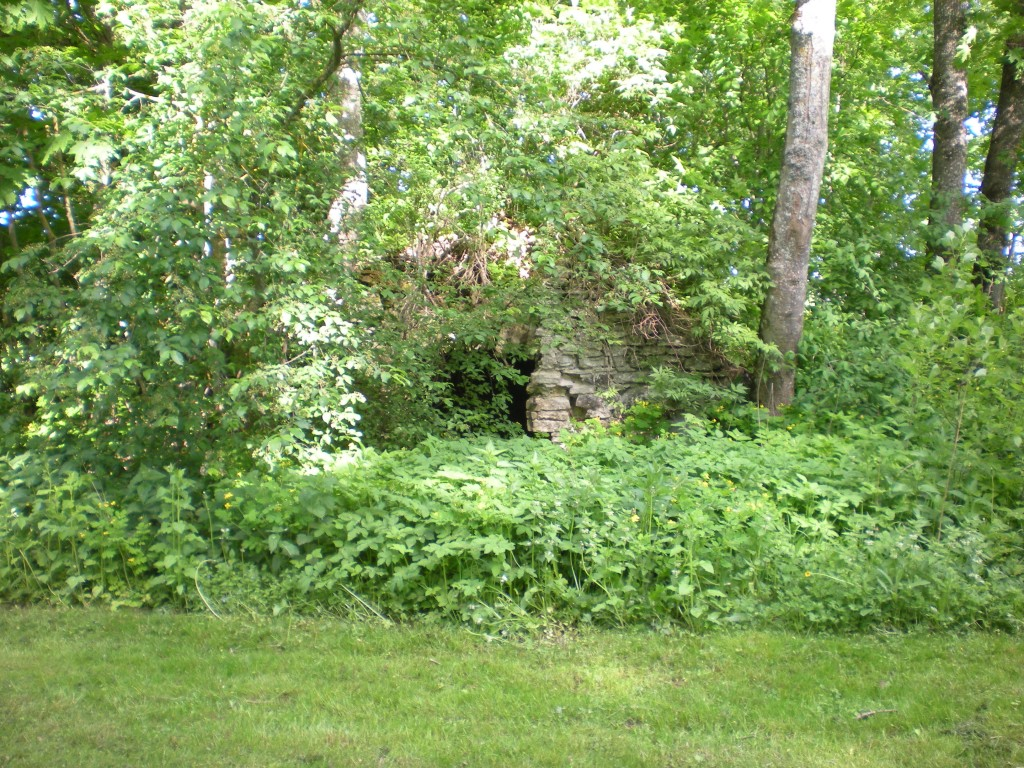 Aruküla mõisa kelder Tiit Schvede 01.06.2012